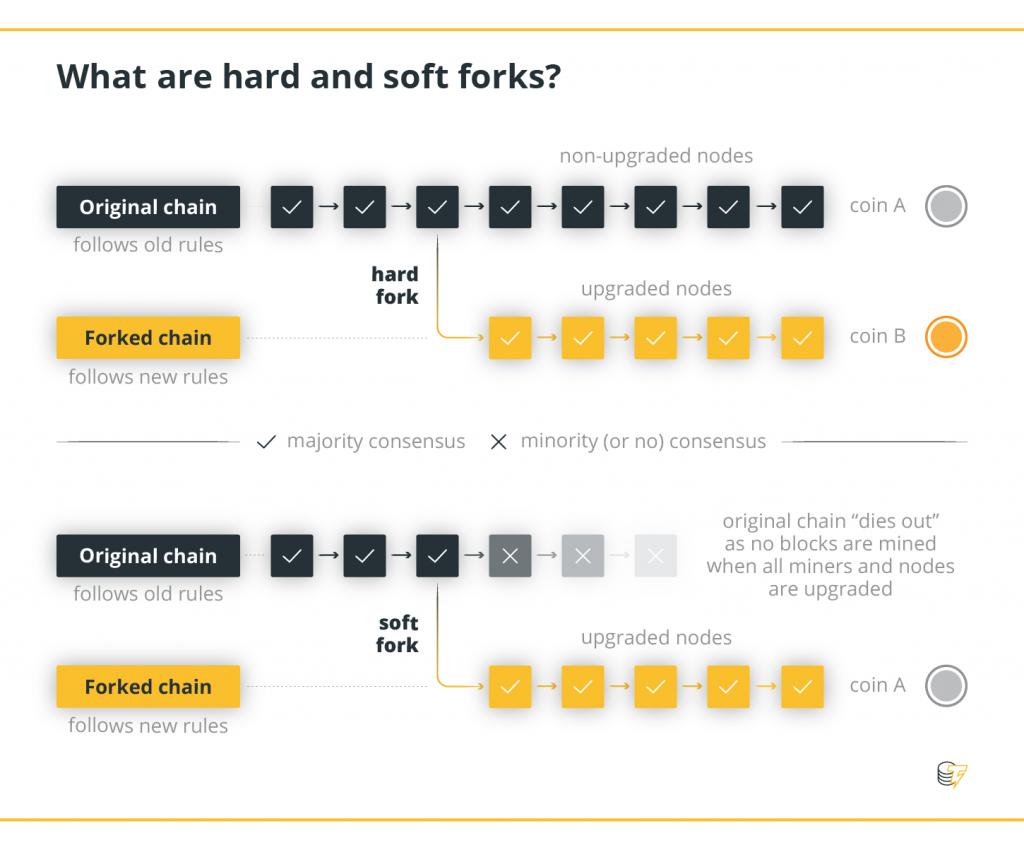 Flowchart infographic hardfork